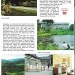 1984 Nannau Brochure