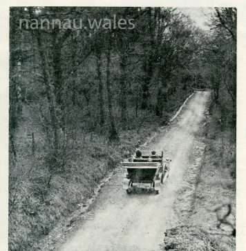 Autumn in Wales - The Hill at Nannau - The Field Magazine from 1915