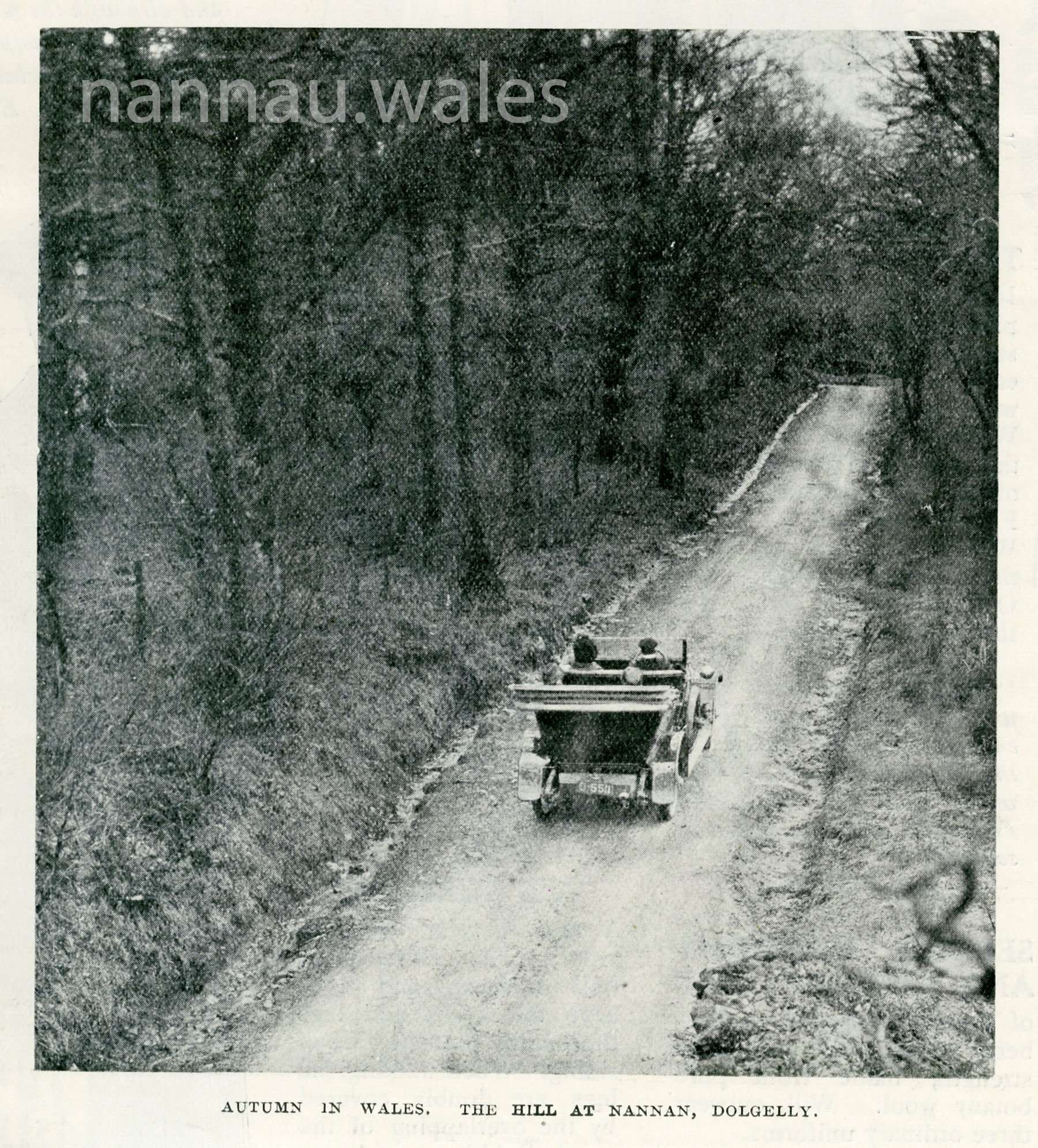 Autumn in Wales - The Hill at Nannau - The Weekly Magazine from 1915