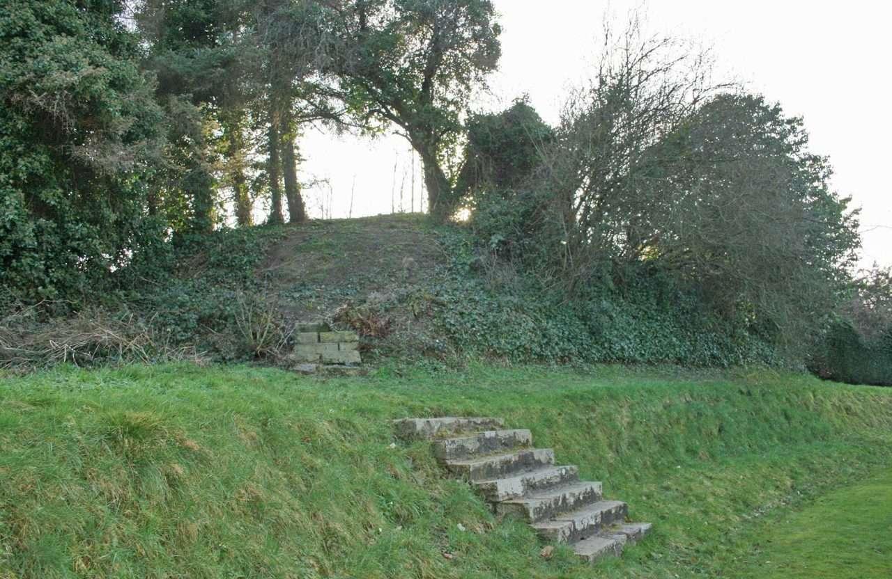 Cadwgan ap Bleddyn Site