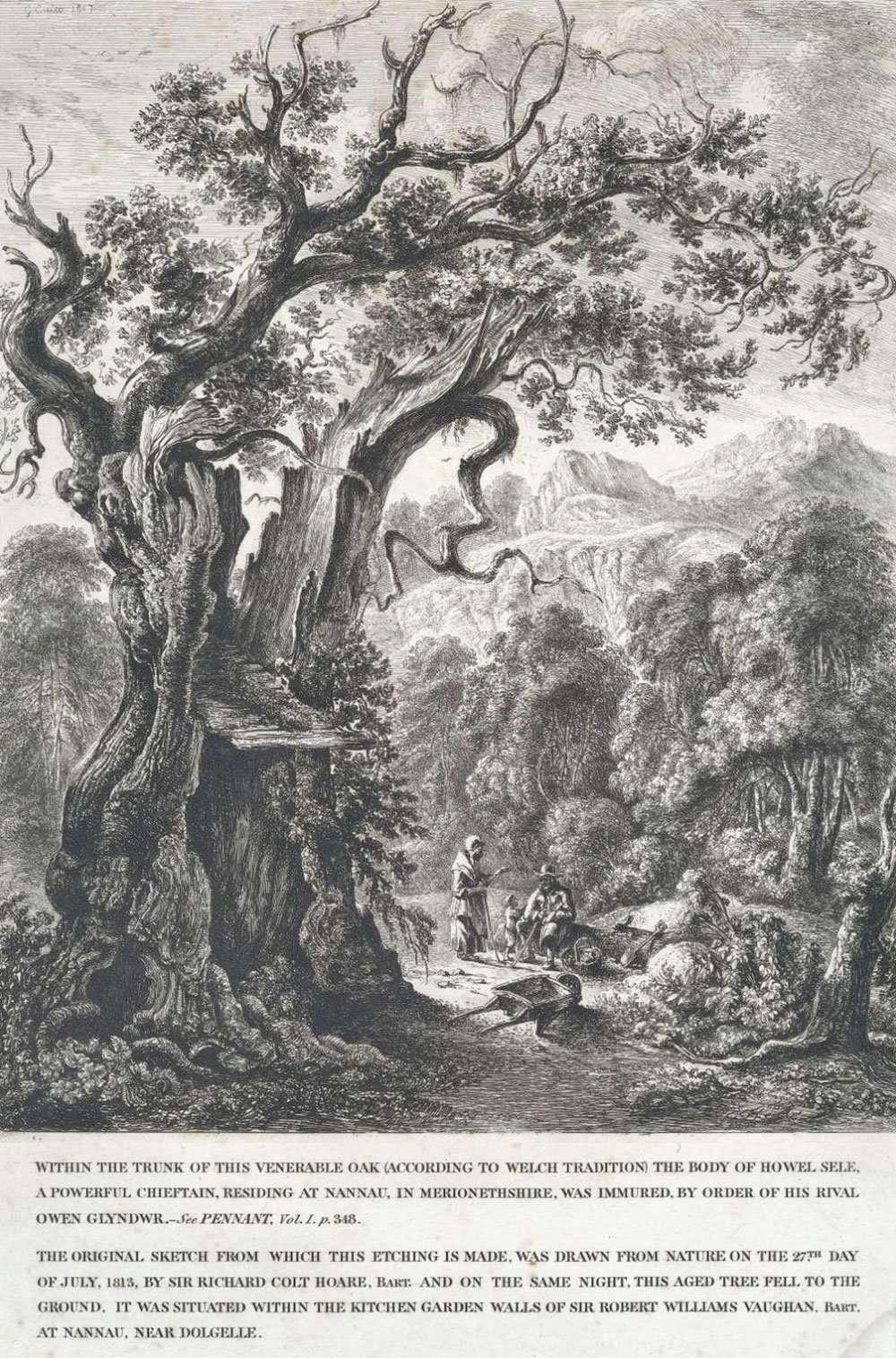 Derwen Ceubren yr Ellyll Print from the 1813 Sketch by Sir Richard Colt Hoare