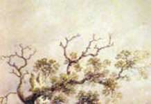 The Nannau Oak - Watercolour by Sir Richard Colt Hoare © National Trust / David Cousins.