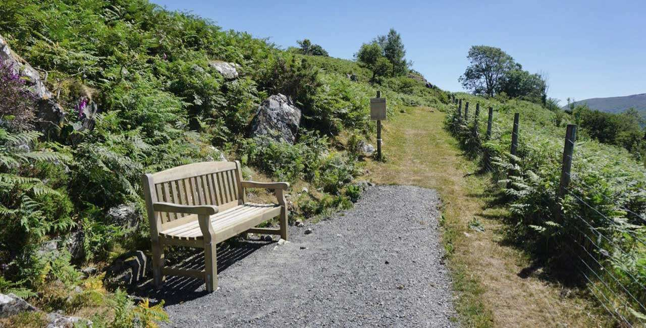 A Bench Facing South Towards Cader Idris