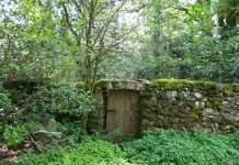 An Old Entrance to Yr Hen Ardd (The Old Garden)