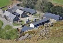 Nannau Home Farm