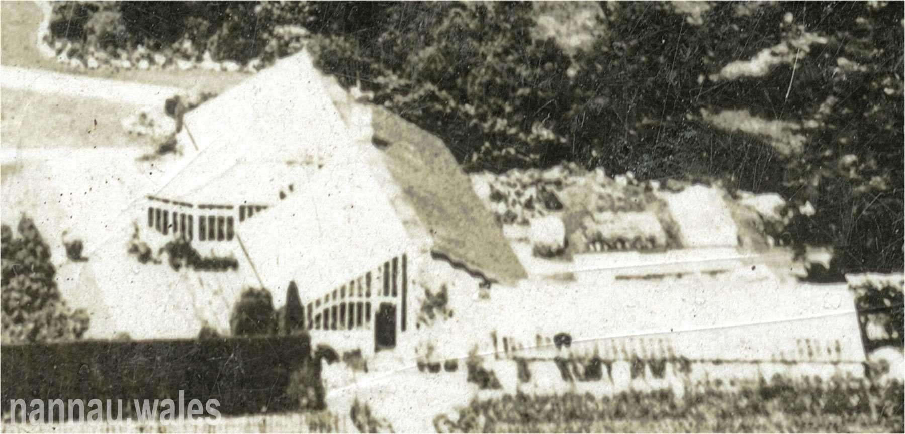 Nannau 1905 Postcard