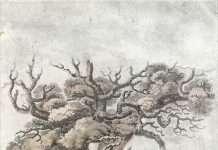 Derwen Ceubren yr Ellyll Engraving - John Parry