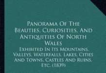 Panorama Of The Beauties, Curiosities, And Antiquities Of North Wales (1839)