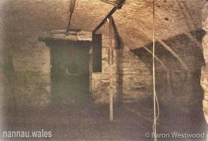Plas Nannau Hall Cellar - 31st January 1996. Photo © Baron Westwood.