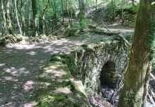 Bont y Llew (Lion Bridge)
