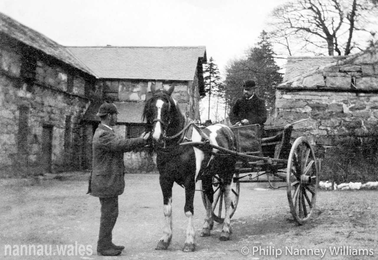 Robert Vaughan of Garthmaelan at the Nannau Stable Yard. Photo © Philip Nanney Williams.