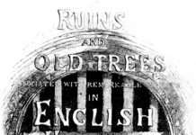 Ruins & Old Trees Cover