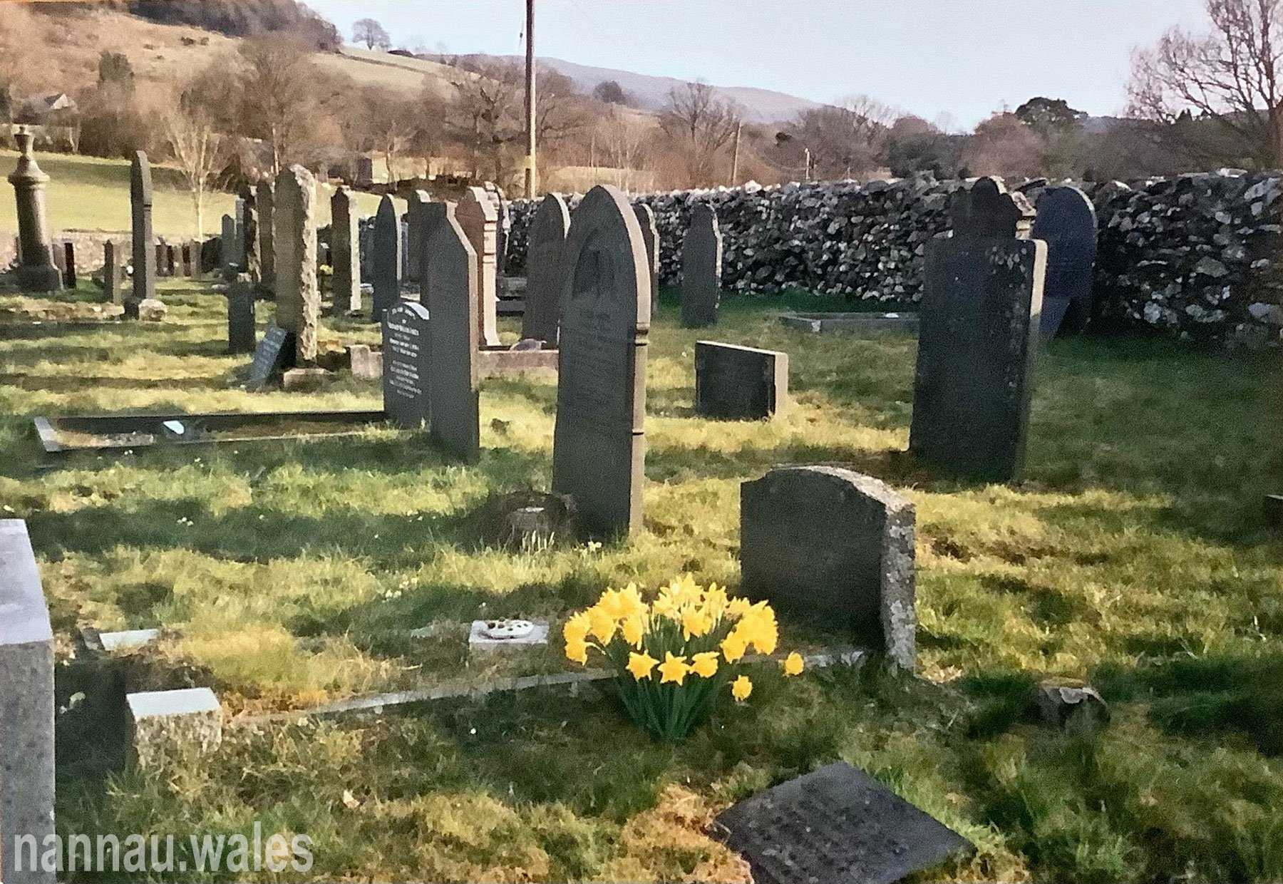 Sylvanus Jones Owen's grave (the small headstone directly behind the daffodils) in Capel Newydd cemetery Brithdir. The headstone does mention his connection to Nannau. His father and mother are in the next grave along. Image courtesy of Bryan Panter.