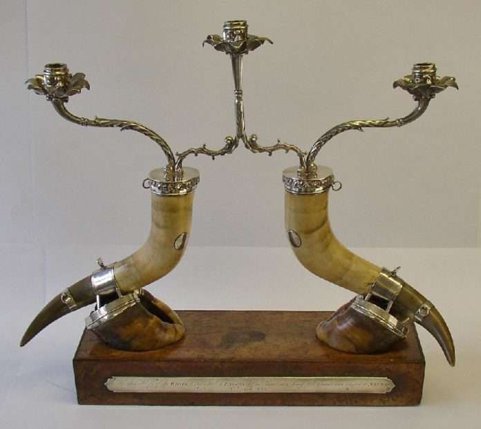 Silver mounted horns and hoofs of the white ox