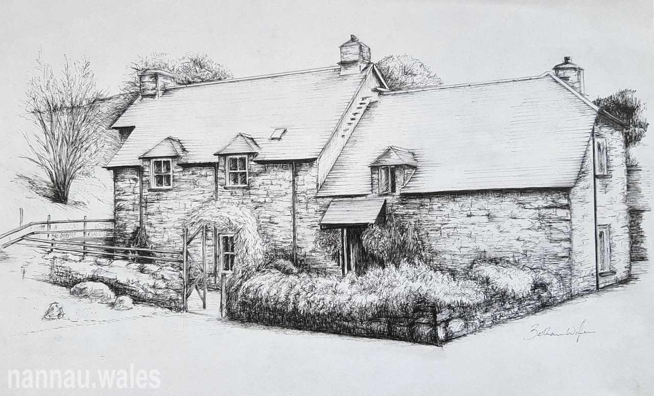 Tyddyn-Gareg, Tabor (Drawing by Bethan Rowlands Wiffen)