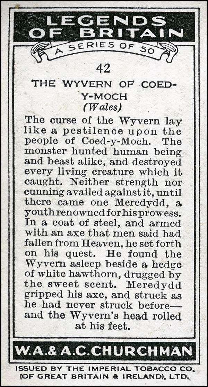 The Wyvern of Coed y Moch